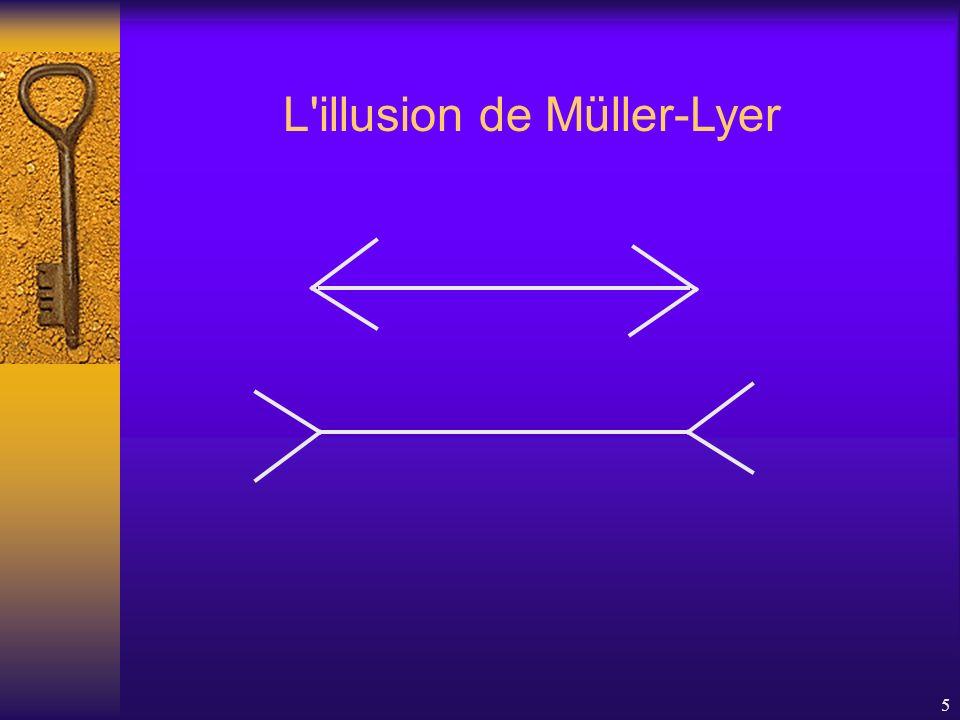L illusion de Müller-Lyer