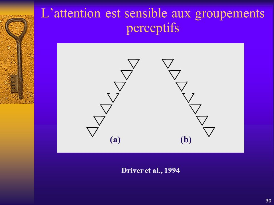 L'attention est sensible aux groupements perceptifs
