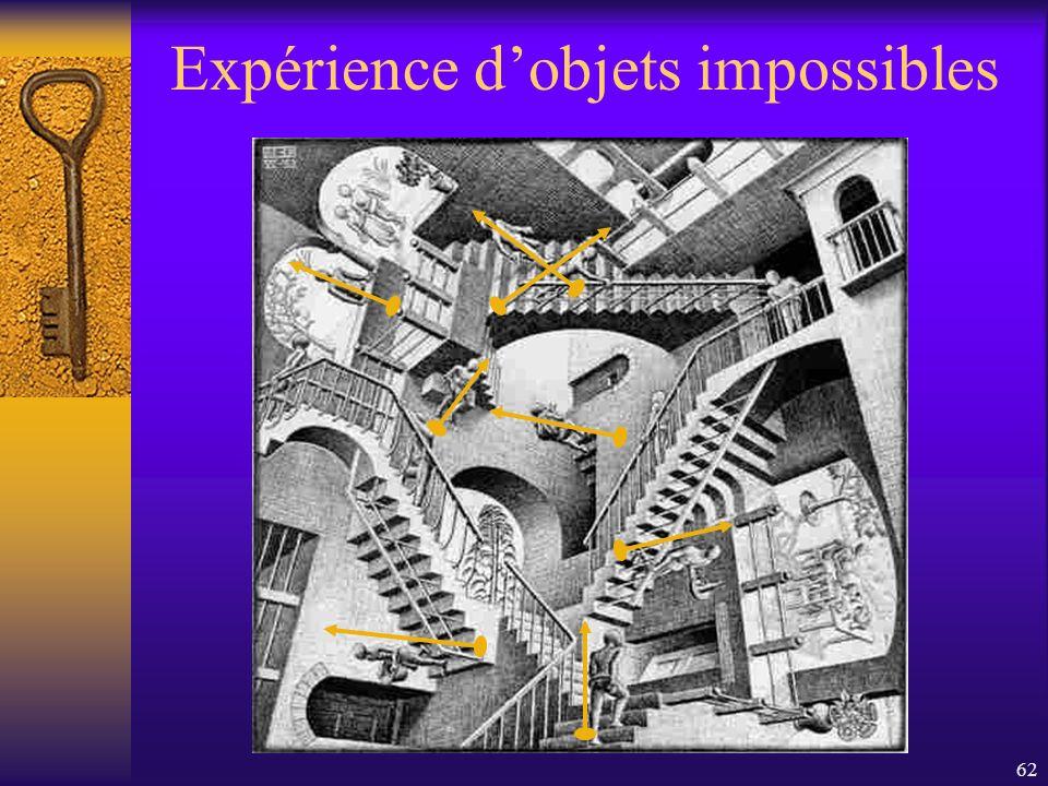 Expérience d'objets impossibles