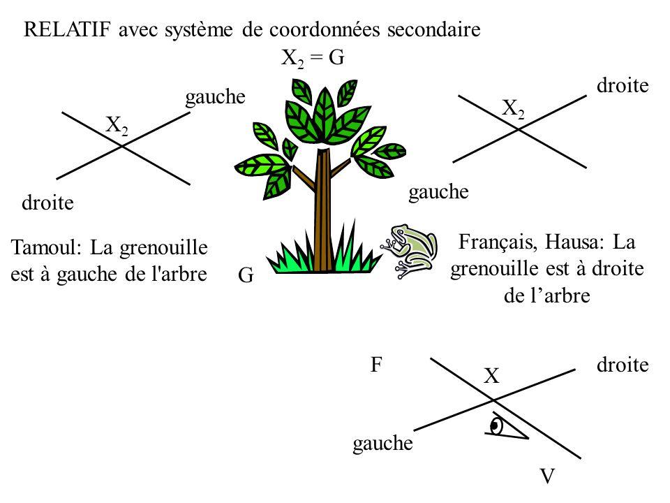 RELATIF avec système de coordonnées secondaire X2 = G droite gauche X2