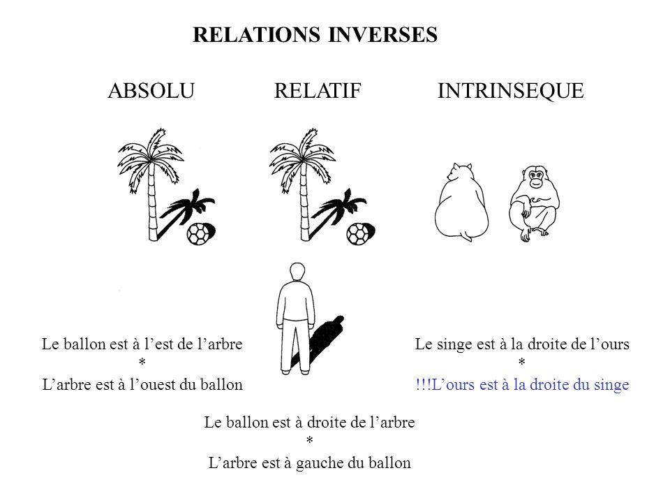 RELATIONS INVERSES ABSOLU RELATIF INTRINSEQUE