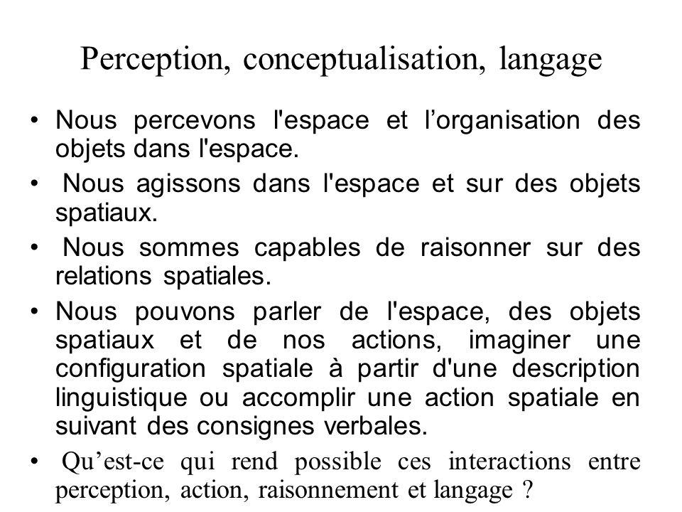 Perception, conceptualisation, langage