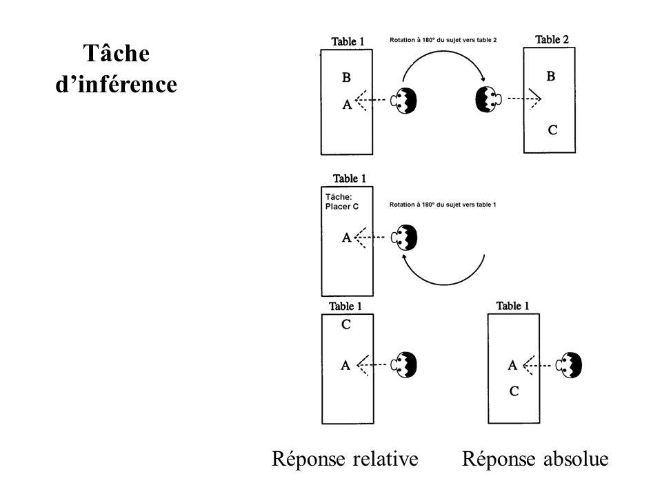 Tâche d'inférence Réponse relative Réponse absolue