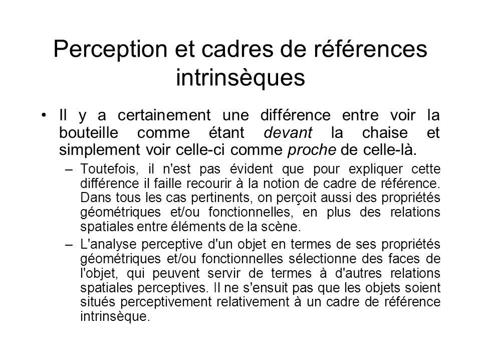 Perception et cadres de références intrinsèques