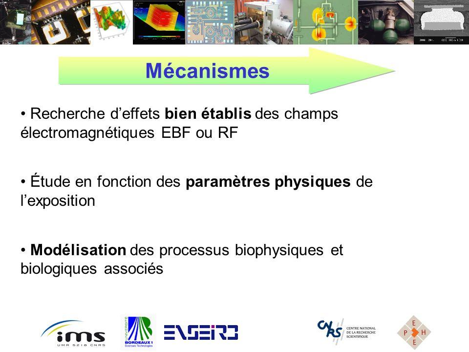Mécanismes Recherche d'effets bien établis des champs électromagnétiques EBF ou RF. Étude en fonction des paramètres physiques de l'exposition.