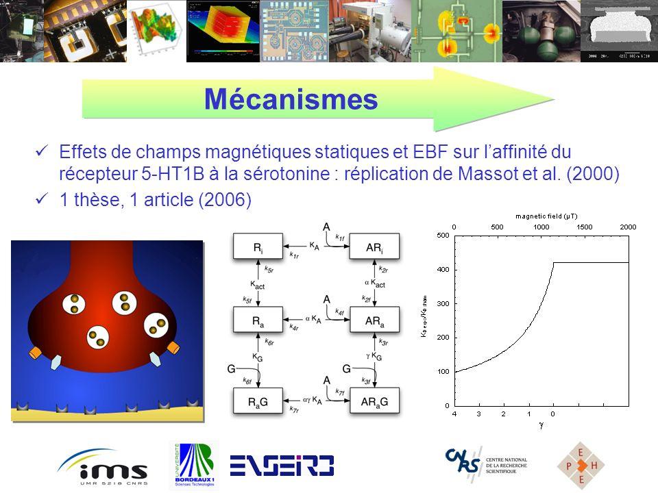 Mécanismes Effets de champs magnétiques statiques et EBF sur l'affinité du récepteur 5-HT1B à la sérotonine : réplication de Massot et al. (2000)