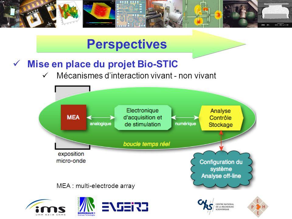 Perspectives Mise en place du projet Bio-STIC