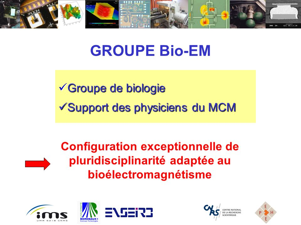 GROUPE Bio-EM Groupe de biologie Support des physiciens du MCM