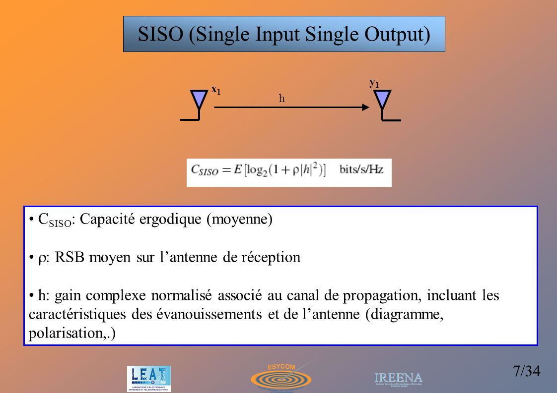 SISO (Single Input Single Output)