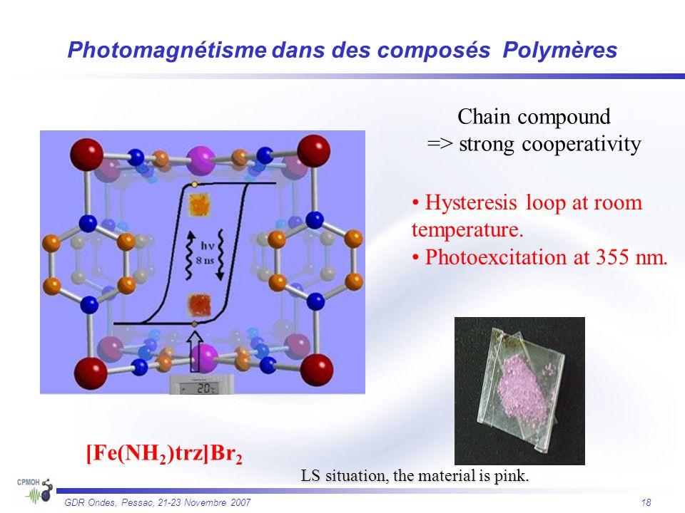Photomagnétisme dans des composés Polymères
