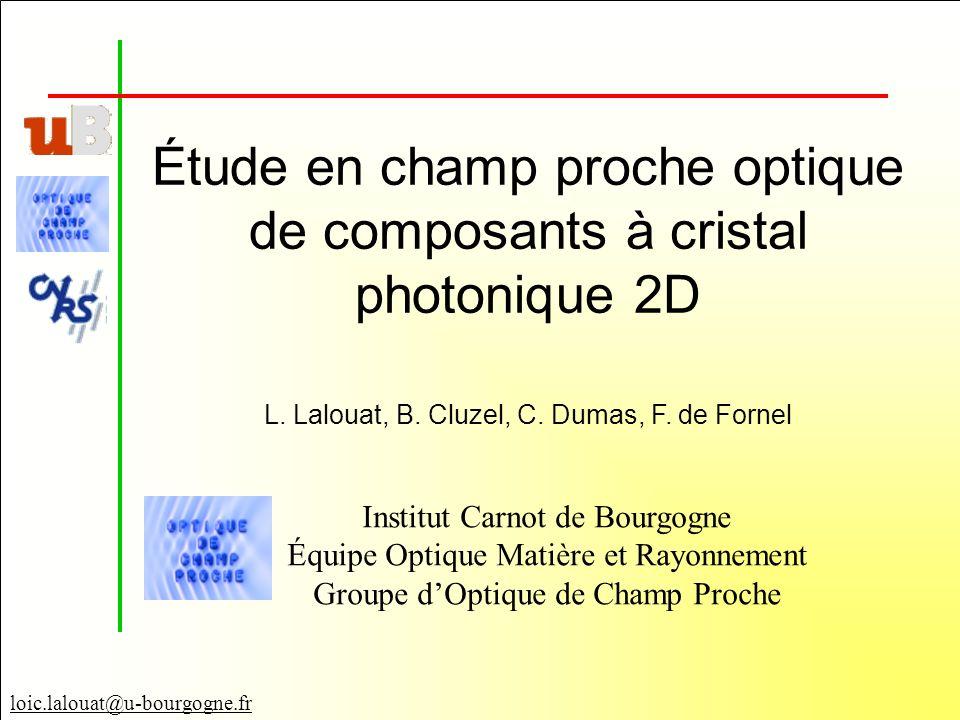 Étude en champ proche optique de composants à cristal photonique 2D
