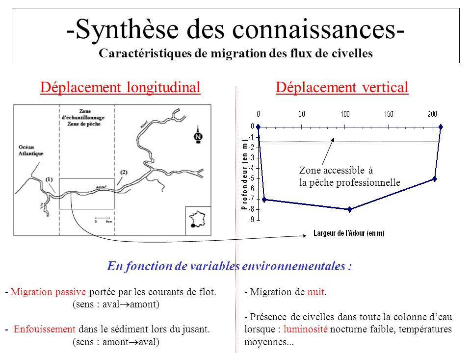 -Synthèse des connaissances- Caractéristiques de migration des flux de civelles