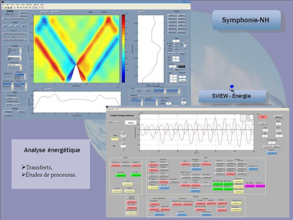 Symphonie-NH Analyse énergétique Transferts, Études de processus.