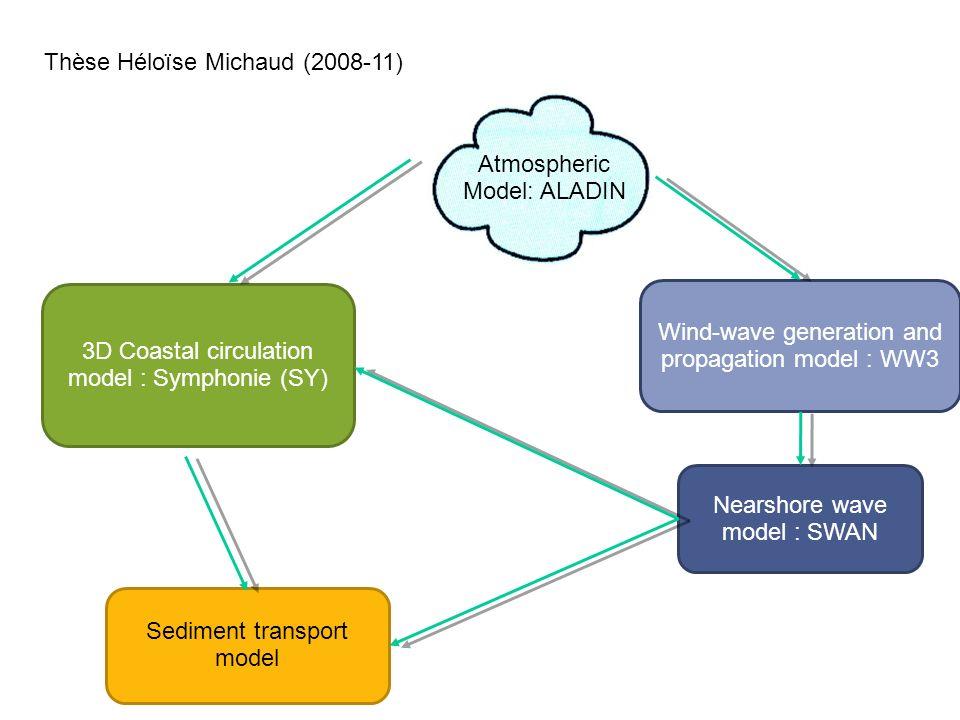 Thèse Héloïse Michaud (2008-11)