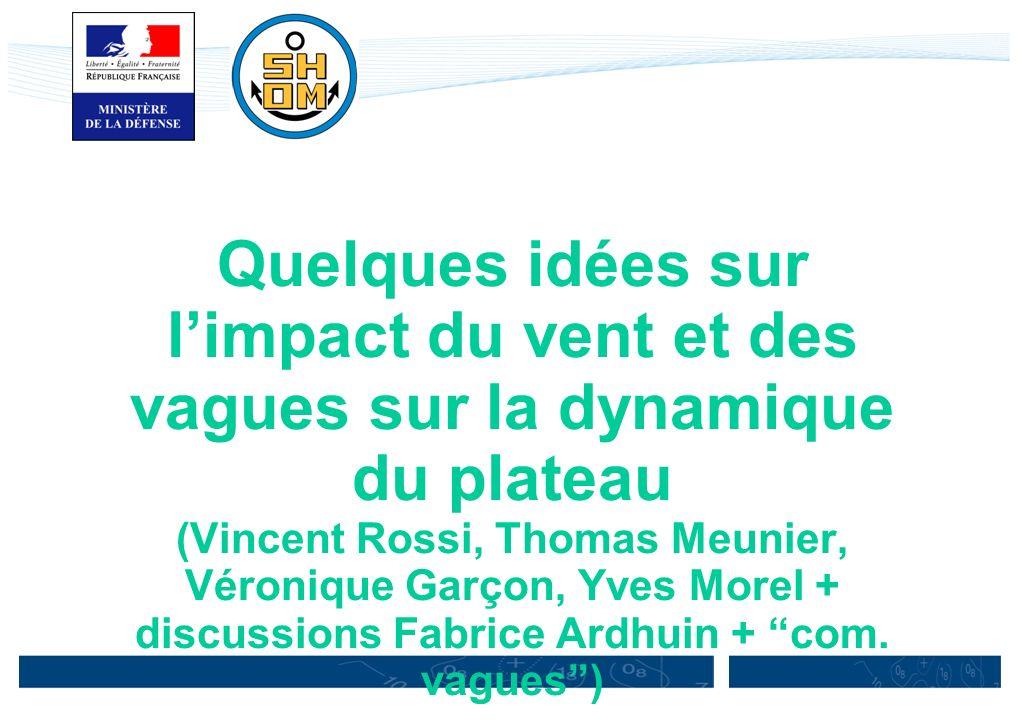 Quelques idées sur l'impact du vent et des vagues sur la dynamique du plateau (Vincent Rossi, Thomas Meunier, Véronique Garçon, Yves Morel + discussions Fabrice Ardhuin + com.