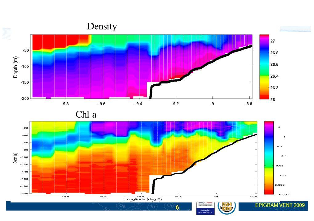 Density Chl a