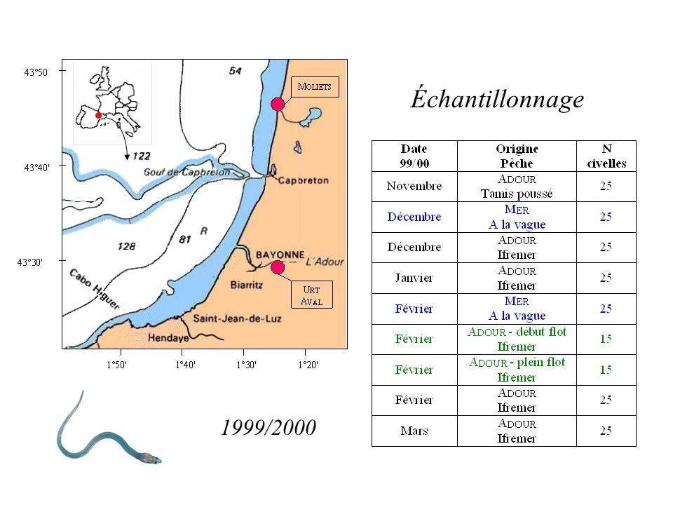 Échantillonnage 1999/2000