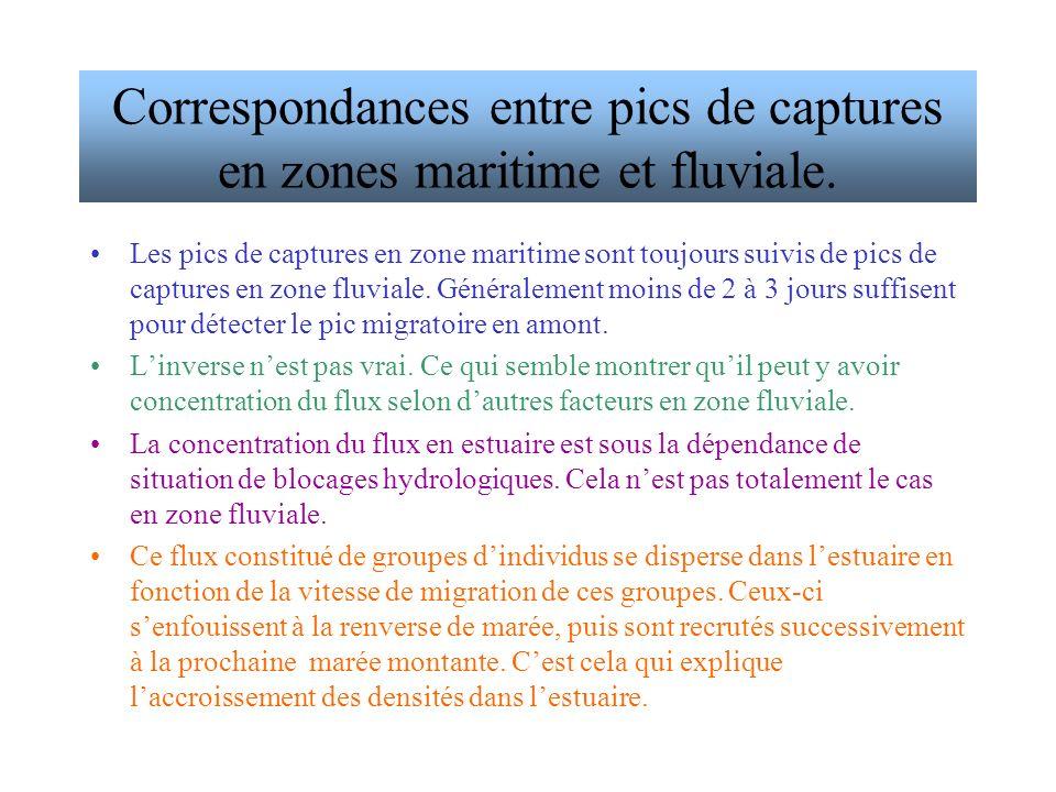 Correspondances entre pics de captures en zones maritime et fluviale.