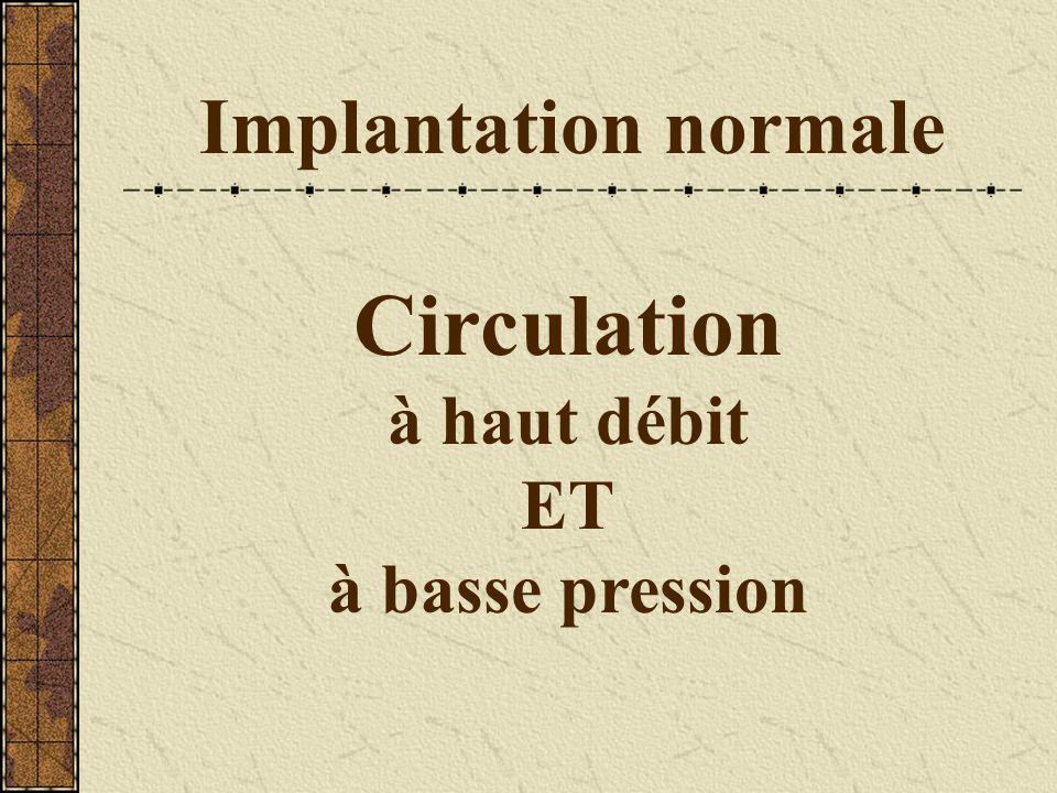 Implantation normale Circulation à haut débit ET à basse pression