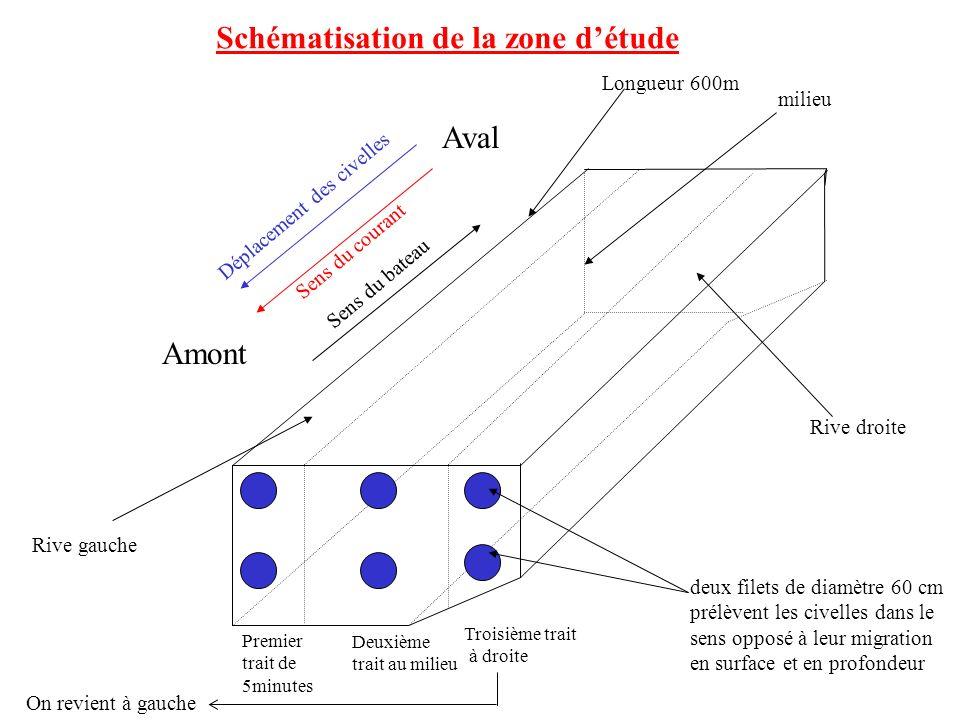 Schématisation de la zone d'étude