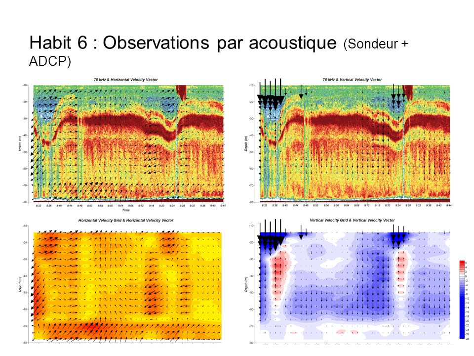 Habit 6 : Observations par acoustique (Sondeur + ADCP)