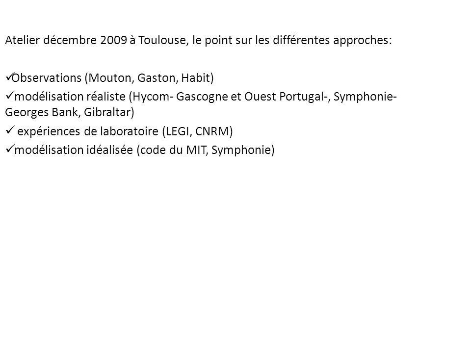 Atelier décembre 2009 à Toulouse, le point sur les différentes approches: