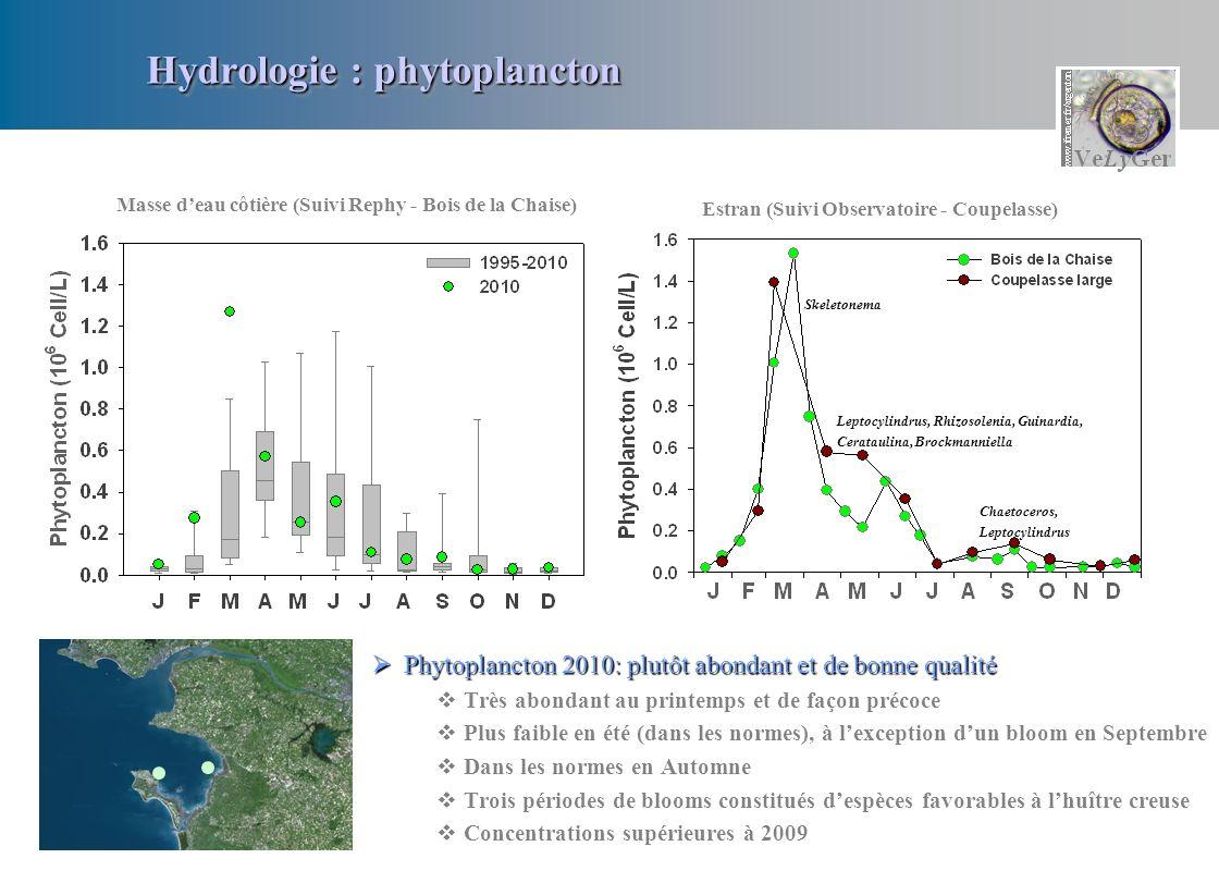 Hydrologie : phytoplancton