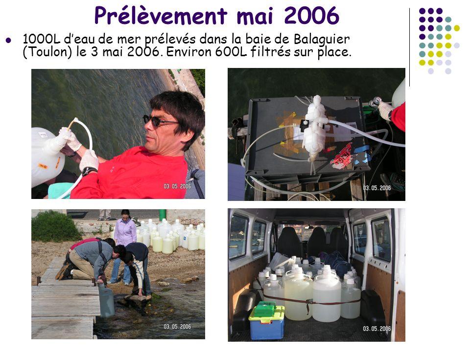 Prélèvement mai 2006 1000L d'eau de mer prélevés dans la baie de Balaguier (Toulon) le 3 mai 2006.
