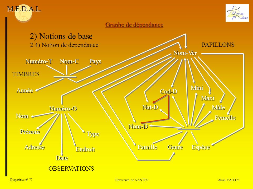 2) Notions de base M.E.D.A.L. Graphe de dépendance
