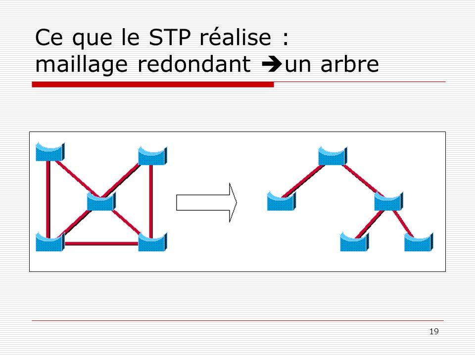 Ce que le STP réalise : maillage redondant un arbre