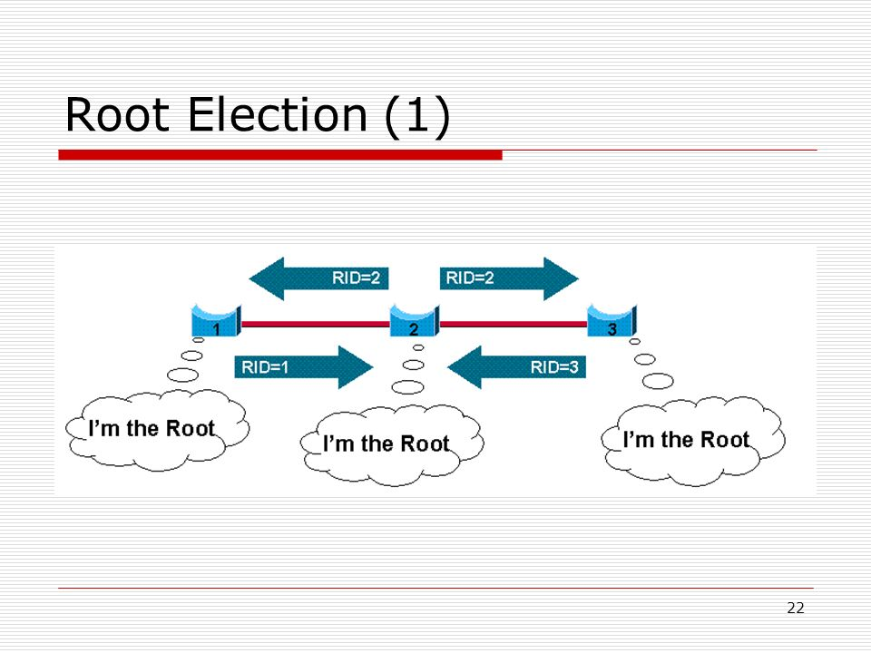 Root Election (1)