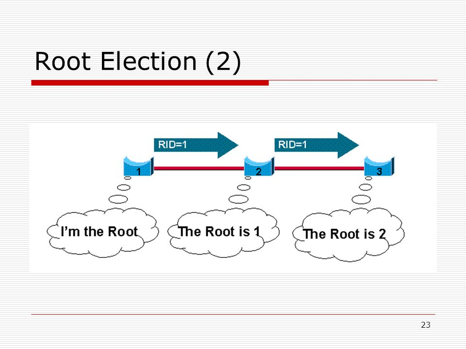 Root Election (2)