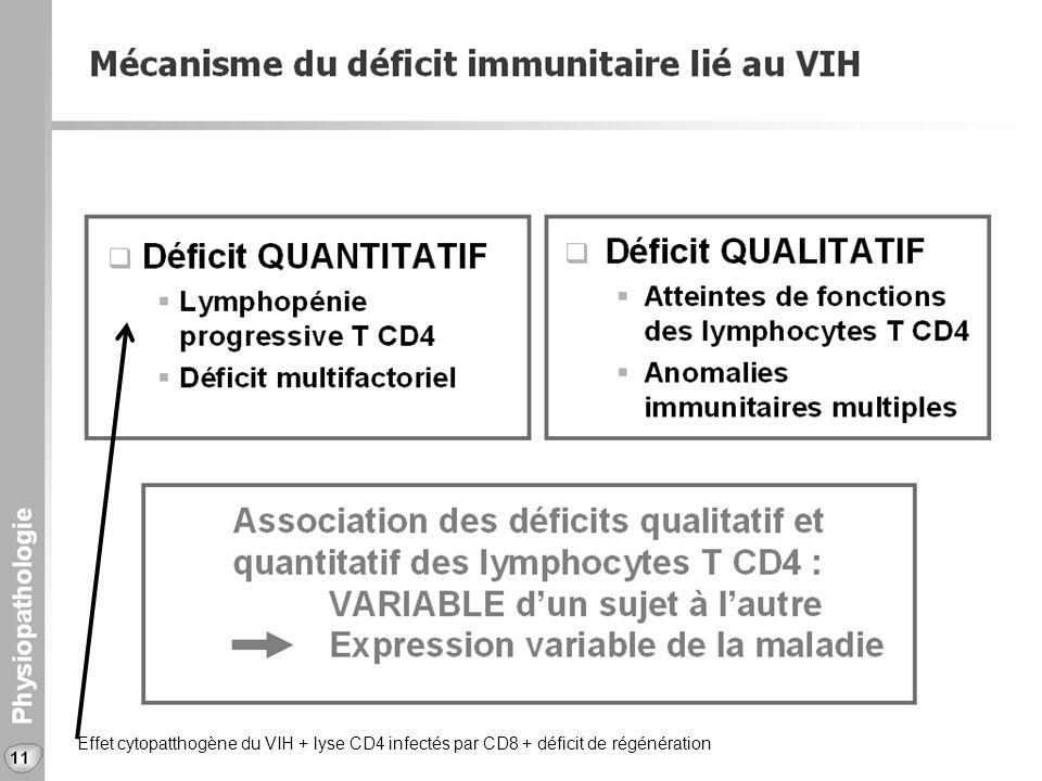 Effet cytopatthogène du VIH + lyse CD4 infectés par CD8 + déficit de régénération