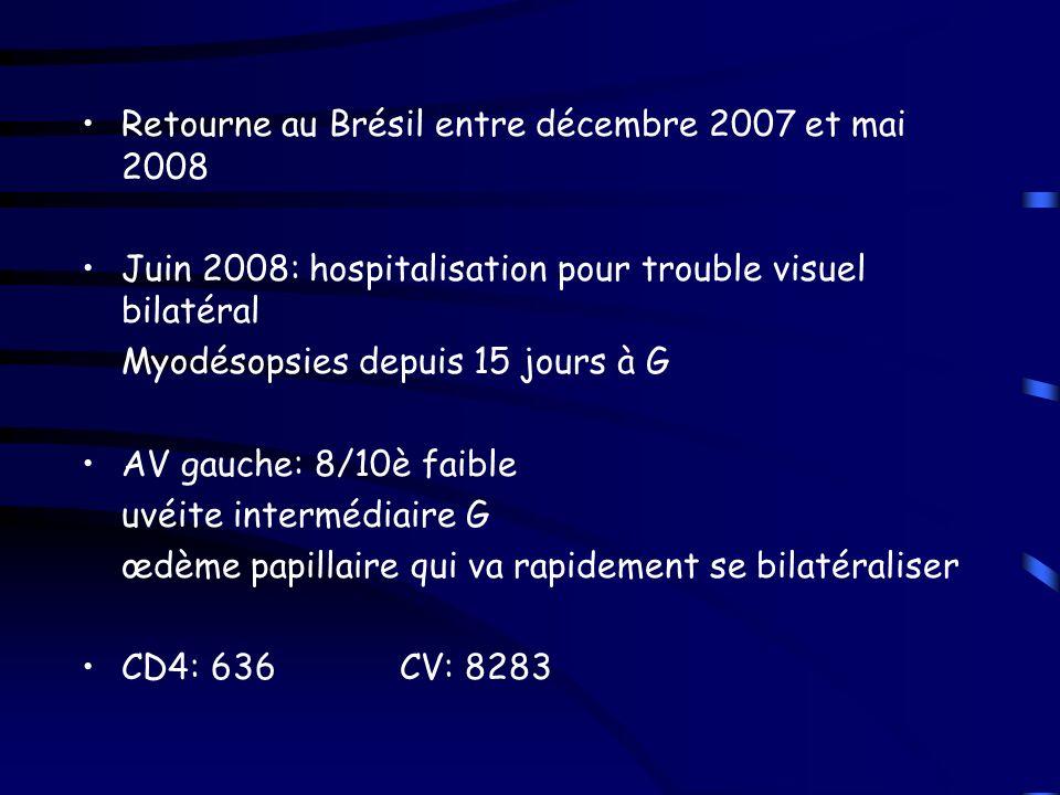 Retourne au Brésil entre décembre 2007 et mai 2008
