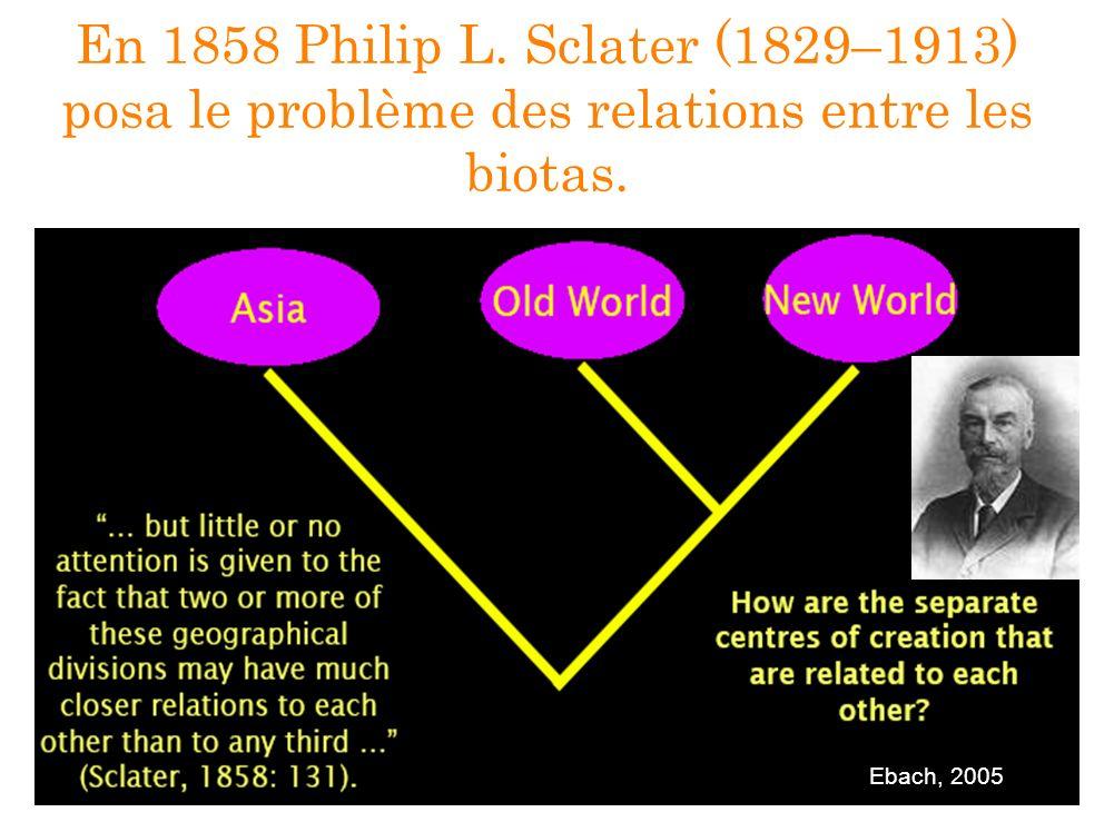 En 1858 Philip L. Sclater (1829–1913) posa le problème des relations entre les biotas.