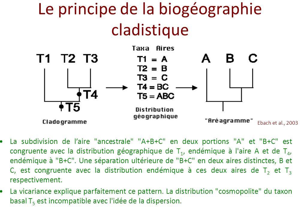 Le principe de la biogéographie cladistique