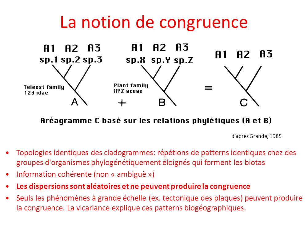 La notion de congruence