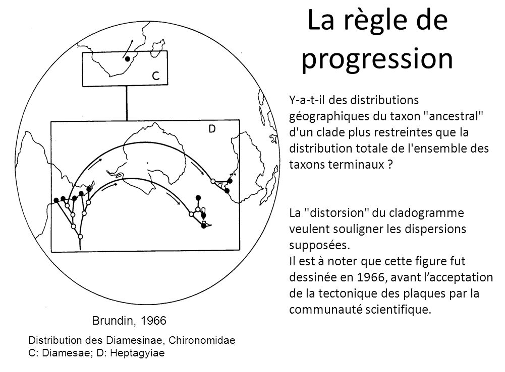 La règle de progression