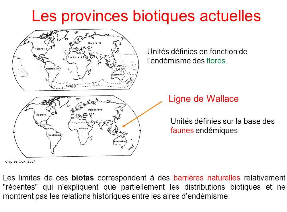 Les provinces biotiques actuelles