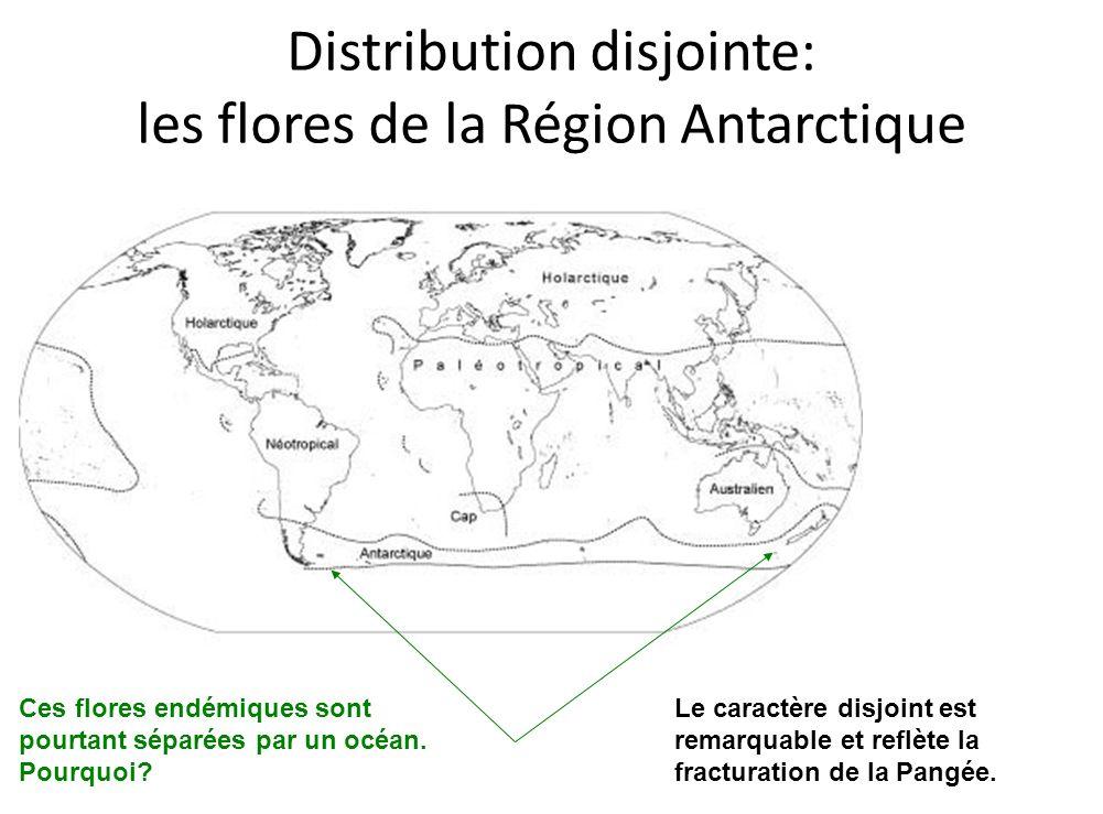 Distribution disjointe: les flores de la Région Antarctique
