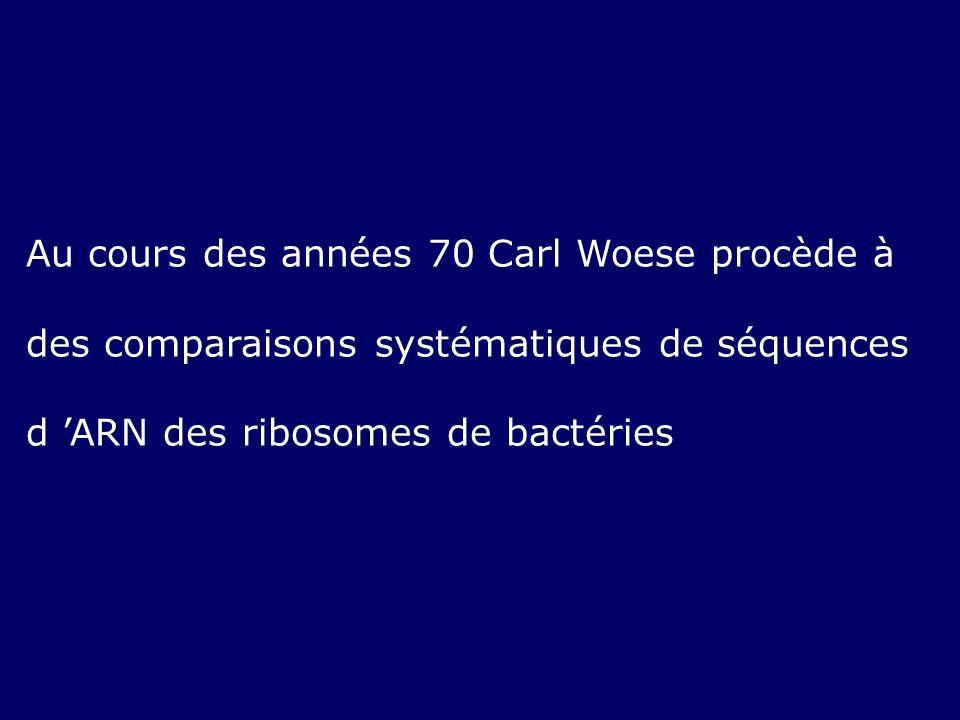 Au cours des années 70 Carl Woese procède à des comparaisons systématiques de séquences d 'ARN des ribosomes de bactéries