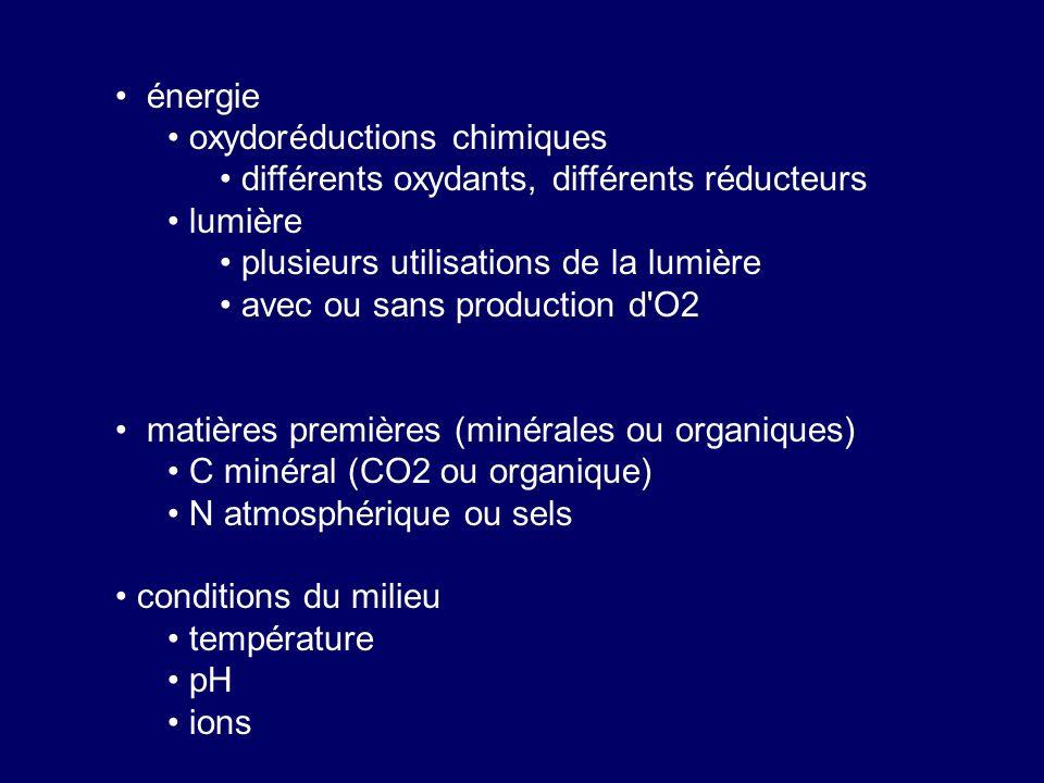 énergie oxydoréductions chimiques. différents oxydants, différents réducteurs. lumière. plusieurs utilisations de la lumière.