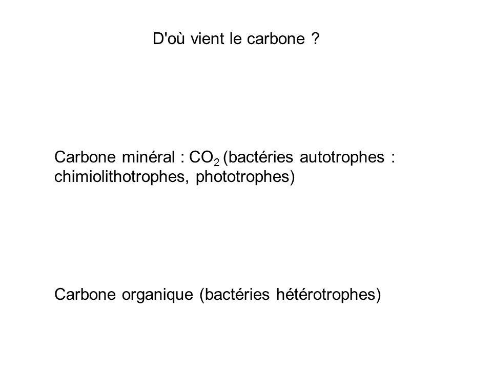 D où vient le carbone Carbone minéral : CO2 (bactéries autotrophes : chimiolithotrophes, phototrophes)