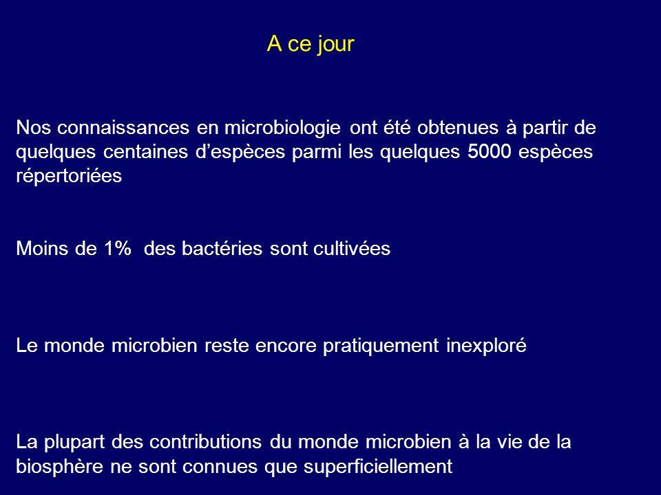 A ce jourNos connaissances en microbiologie ont été obtenues à partir de quelques centaines d'espèces parmi les quelques 5000 espèces répertoriées.