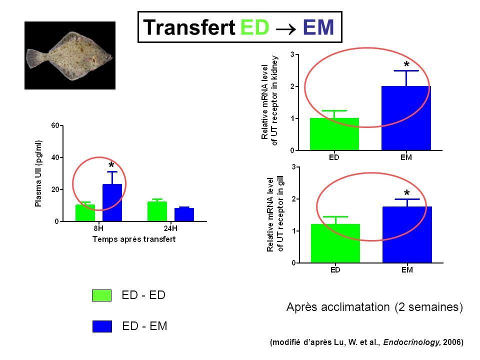 Transfert ED  EM * * * ED - ED Après acclimatation (2 semaines)