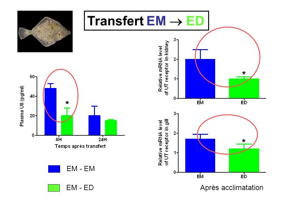 Transfert EM  ED * * * EM - EM EM - ED Après acclimatation