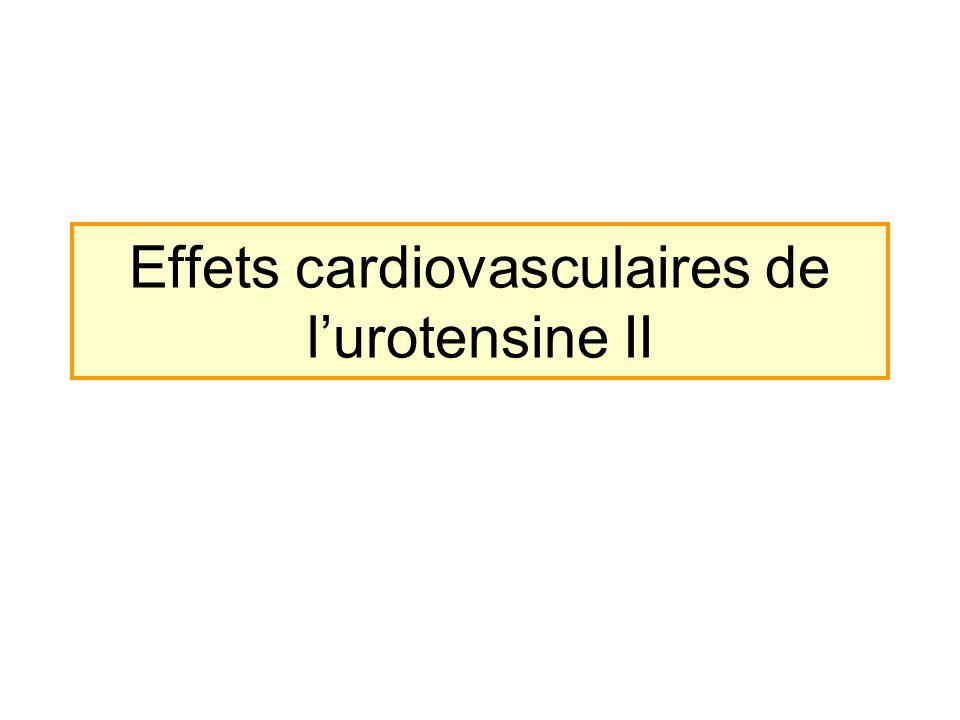 Effets cardiovasculaires de l'urotensine II