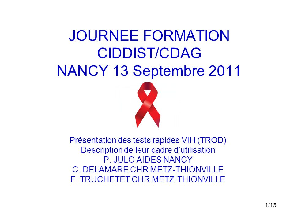JOURNEE FORMATION CIDDIST/CDAG NANCY 13 Septembre 2011