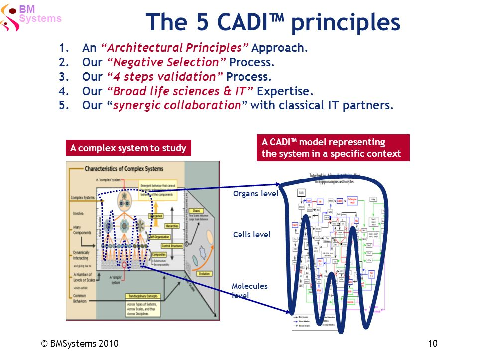 The 5 CADI™ principles An Architectural Principles Approach.