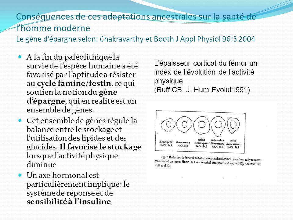 Conséquences de ces adaptations ancestrales sur la santé de l'homme moderne Le gène d'épargne selon: Chakravarthy et Booth J Appl Physiol 96:3 2004